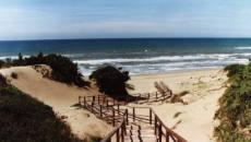 sabaudia spiaggia dune