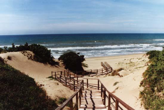 Matrimonio Spiaggia Sabaudia : Alta valenza turistica il comune di sabaudia contro i