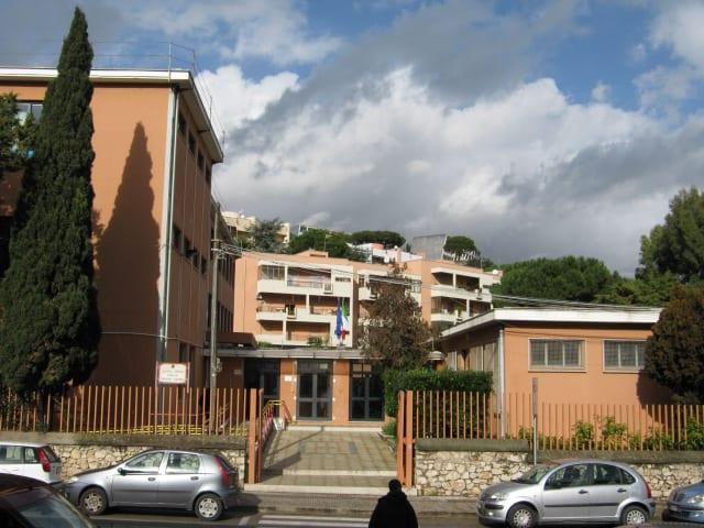 Festa dell'albero: Legambiente organizza eventi in tutta la Campania