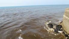 sversamento lago sabaudia (8)