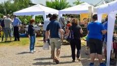 Agrimercato domenica 17 maggio