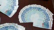 20 euro fac simile