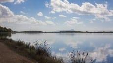 Fogliano - Bordo lago