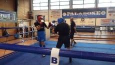 Spinelli vs D'Antoni boxe latina
