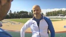 Luigi Cicchetti