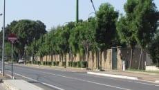 L'esterno dello stadio Ballarin a Mezzomonte