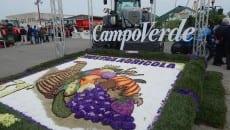 La mostra agricola di Campoverde
