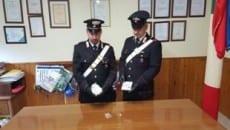 Lo stupefacente sequestrato a giugno dai carabinieri