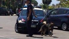 carabinieri controlli estate 2016