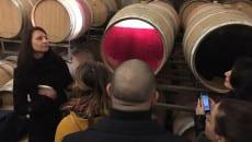 Food and Wine Management lungo la Strada del Vino della provincia di Latina (4)