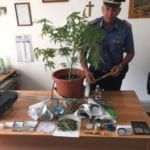 "Marijuana ed una pianta d'""erba"" in casa, arrestato 28enne di Minturno"