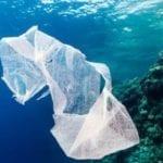 Pericolo plastica, lo strumento dei Contratti di costa