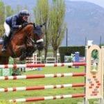 Gran premio Città di Cisterna: torna il concorso nazionale di equitazione