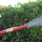 """Primo caso di Chikungunya ad Aprilia, Apl: """"Basta chiacchiere. Disinfestate"""""""