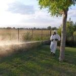 Latina, è il momento della disinfestazione anti-zanzare