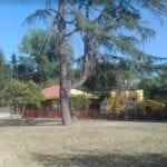 Intitolazione del parco a Falcone-Borsellino: i ringraziamenti del sindaco