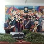 Durante i controlli anti-incendio spunta una piantagione di marijuana: un arresto