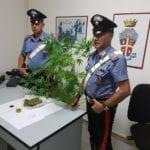 Con la droga in casa, arrestato un 33enne di Minturno