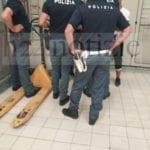 Furto all'interno dell'ipermercato Panorama, fermati due giovani