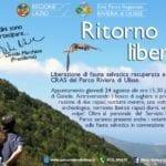Parco di Gianola, liberazione di fauna selvatica