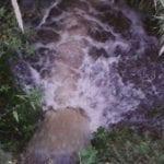 Uno strano flusso idrico nel Rio Santa Croce di Gianola (#video)