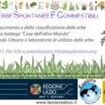 Il primo incontro per il riconoscimento di erbe spontanee nel Parco degli Aurunci