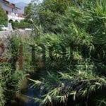 """Formia, il Comitato di zona: """"Chi inquina Rio Santa Croce?"""""""