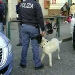 Stretta antiterrorismo, controlli a tappeto in provincia di Latina