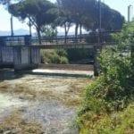 """L'allarme di Anbi Lazio: """"Negli ultimi 7 anni piogge dimezzate, coltivazioni a rischio"""""""