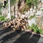 Frana lungo la strada per Castellonorato, sul posto i Vigili del Fuoco