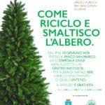 Latina, ecco la raccolta degli alberi di Natale