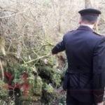 Allevatore ucciso: un corpo 'spezzato' e quella tomba nel ventre del bosco – VIDEO e FOTO