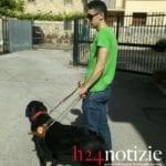 """Cani senza guinzaglio, gli """"occhi"""" di un non vedente di Fondi prigionieri dell'inciviltà: la denuncia"""