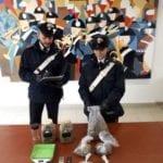 Contrasto allo spaccio di stupefacenti: arrestato un 29enne di Aprilia