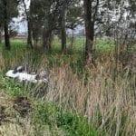 Incidente sulla Migliara 55, macchina finisce nel fossato