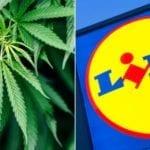 Cannabis al supermercato: Lidl apre alla marijuana legale. Ma in Svizzera…