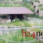 Area archeologica di Piazza Vittoria tra erba alta e incuria