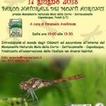 DragonFly Days, giornata dedicata al mondo delle libellule