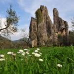 Parchi del Lazio e poltrone, il deputato Trano allerta i grillini