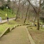 Manutenzione delle aree verdi da parte dei cittadini di Cori