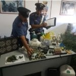 Piantagione di marijuana in casa: arrestati un uomo e una donna di Formia