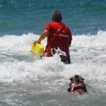 Sicurezza in acqua: a Gaeta la prima giornata dell'evento 'Per evitare un mare di guai' (#FOTO)
