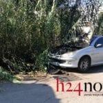 Formia, incendio a Gianola: brucia anche un'auto – FOTO