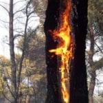 Incendia gli sfalci, provoca un rogo che minaccia anche la sua casa: denunciato