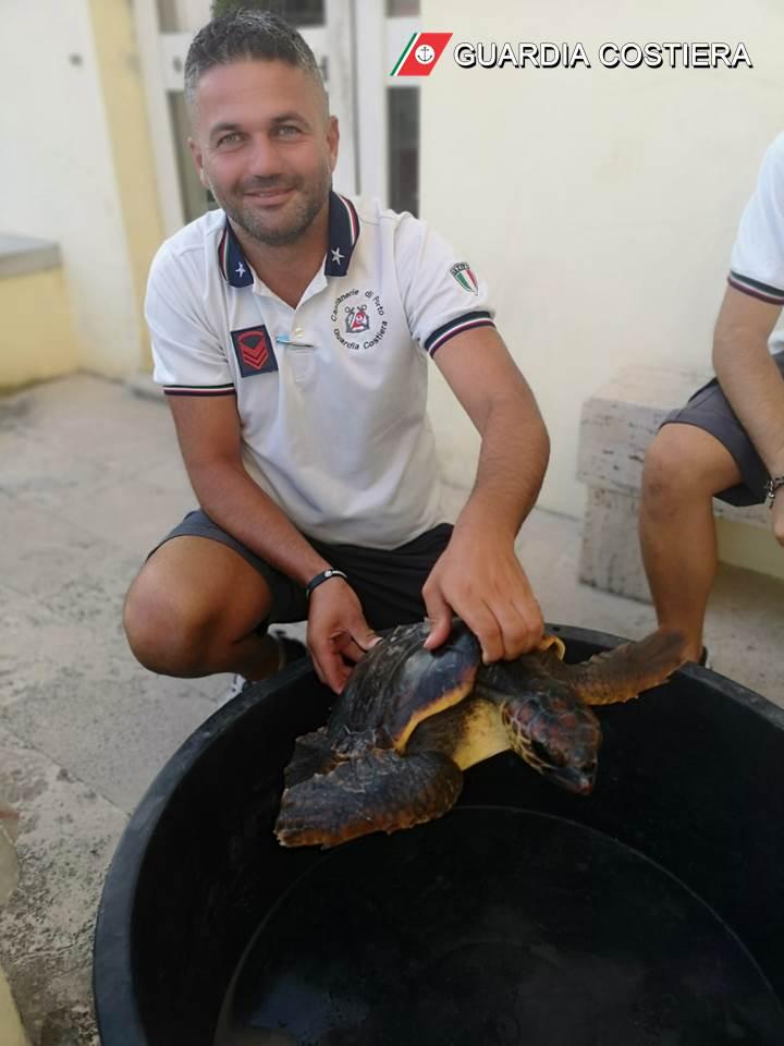 salvataggio tartaruga guardia costiera