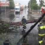 Aprilia, cade un albero a Campoleone e rompe una condotta di gas