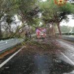 Maltempo in provincia, i Vigili del Fuoco impegnati per la sicurezza stradale