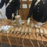 Botti illegali, i carabinieri denunciano un 54enne di Minturno