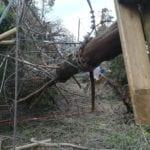 Il maltempo non ha risparmiato neppure Woodpark a Itri #FOTO