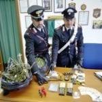 Droga e armi: un arresto e una denuncia